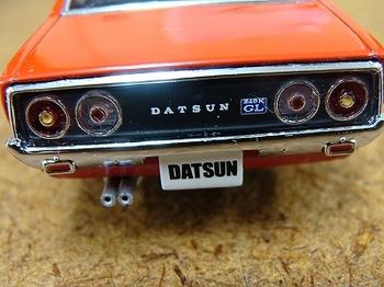 DSC07481.jpg